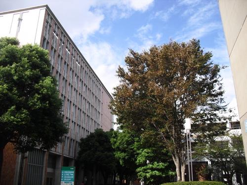 2012117250 (7).JPG