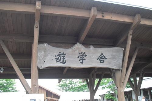 2011734.JPG
