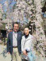 飯塚雅幸&藤間知枝が、お隣「角館の桜」のお花見に、そして「高坂家」を訪れました。
