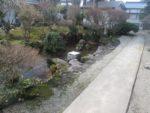 飯塚雅幸&藤間知枝の屋敷内・庭の囲いが外され、我が家もいよいよ春本番です!