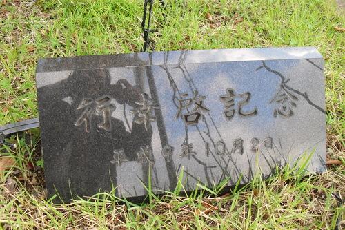 201152412.JPG