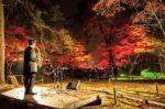飯塚雅幸が昨年まで出演した「東北3大地主池田氏払田分家庭園」「ファンタジーナイト」が11/7・8に開催されました。