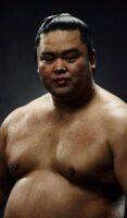 飯塚雅幸が一番好きな力士「妙義龍」関が秋場所・いぶし銀の活躍をしました。